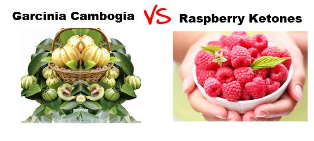 Comparison of Garcinia Cambogia and Raspberry Ketones