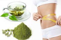 moringa-for-weight-loss